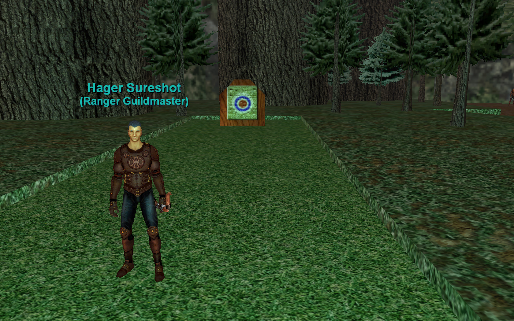 On the Town of: Surefall Glade | EverQuest